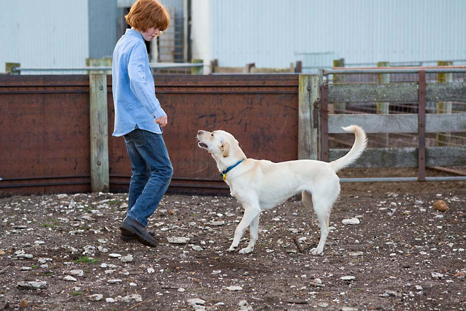 Photo of farm kid playing with a cream coloured dog
