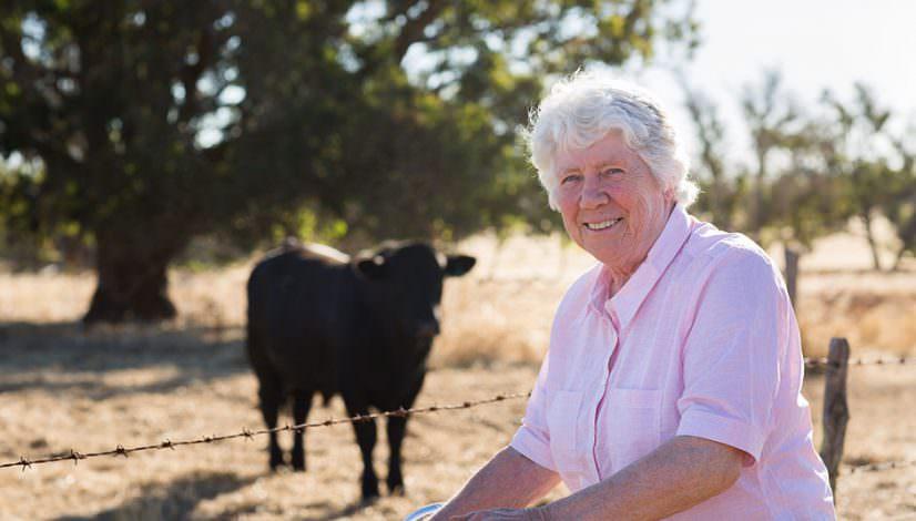 Photograph of farmer with Angus stud bull on Australian Farm
