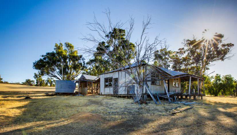 Photo of a derelictfibro farmhouse with a dead tree