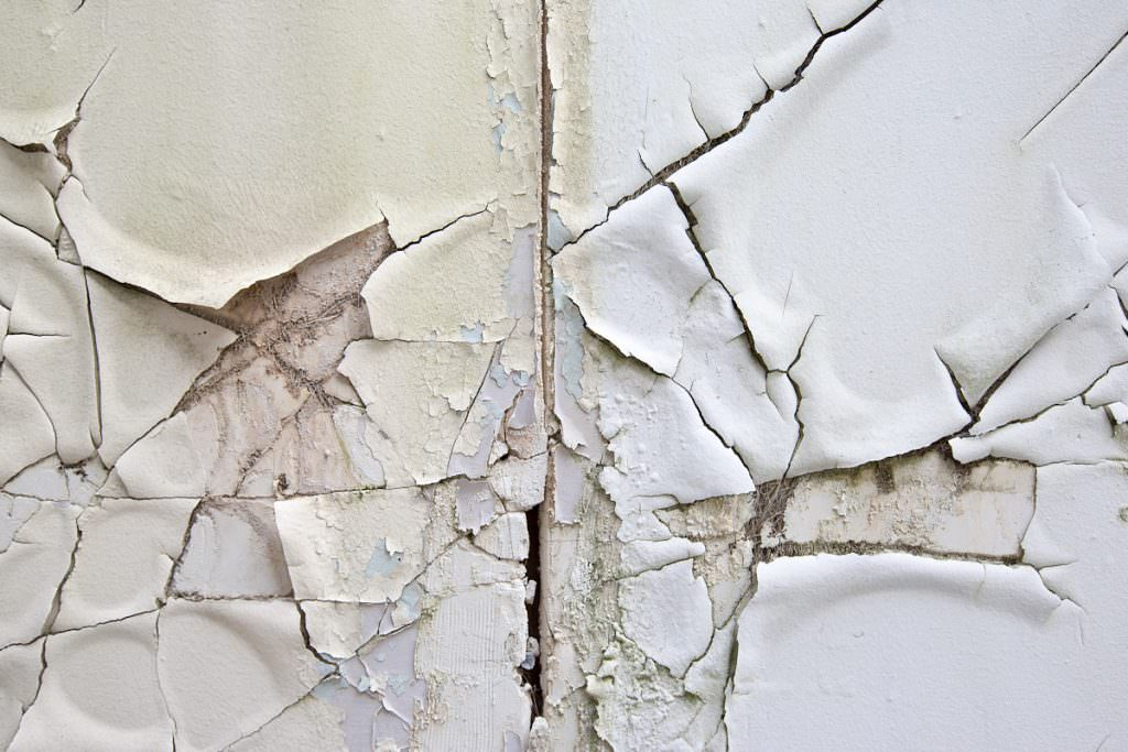 Photo of peeling paint and cracked plaster wall. Photo by Caro Telfer.