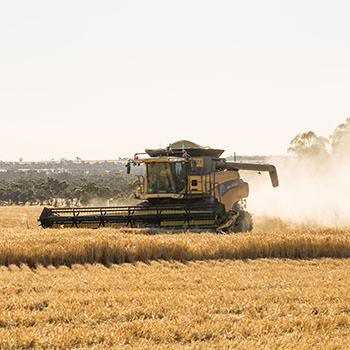 Modern state-of-the art machines, or ancient workhorses - put them in your farm album.